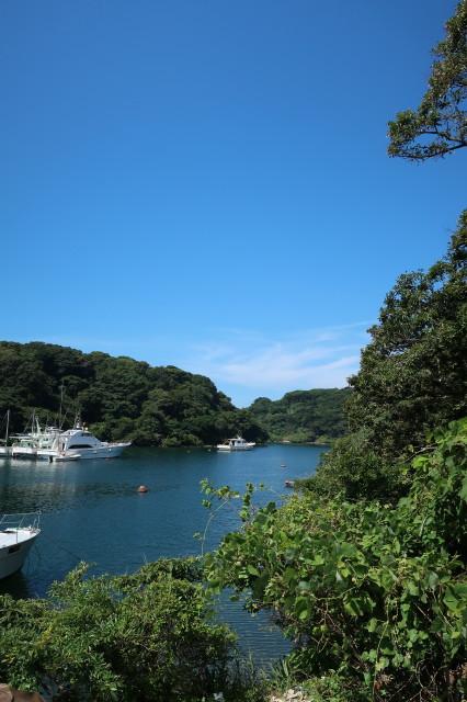 9月6日 漁船入港