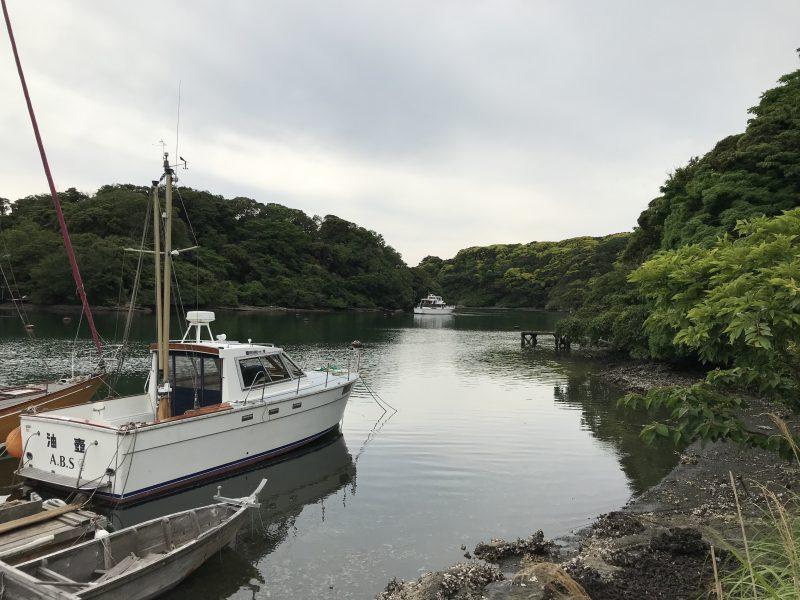 5/25油壺動画